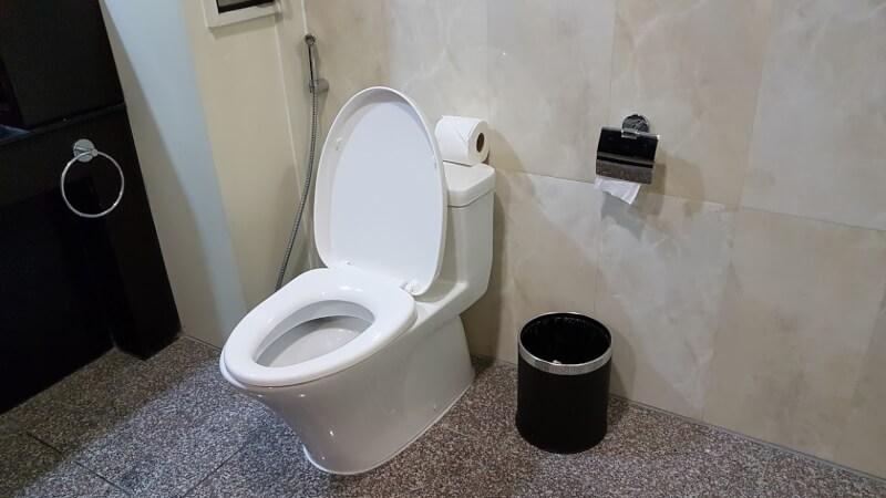 ミャンマーのトイレ事情と最強ト...